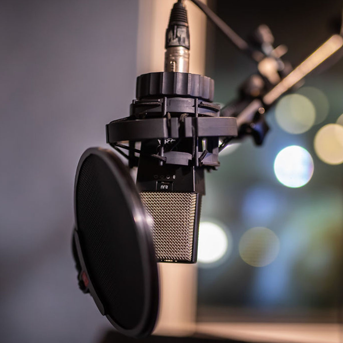 Recording - voice, instruments and sound effects